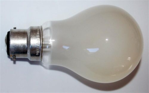 Rough Service Bulbs - 100W BC 240V