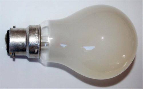 Rough Service Bulbs - 60W BC 240V