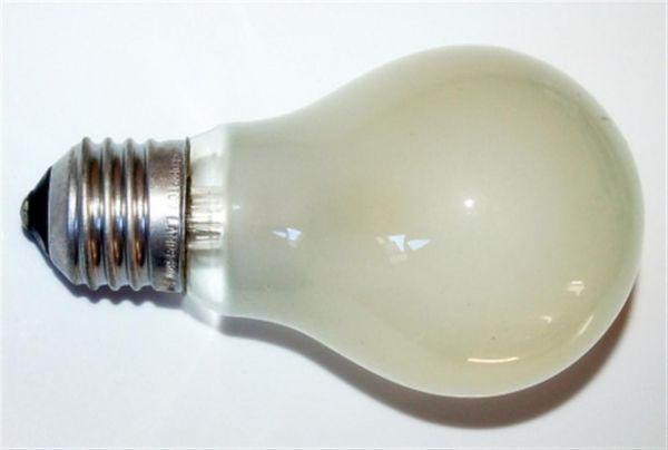 Rough Service Bulbs - 60W ES 240V